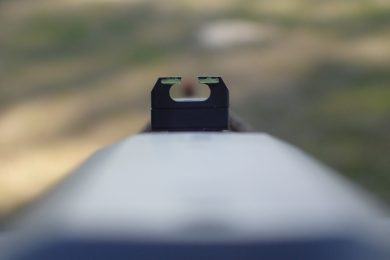Rear sight picture