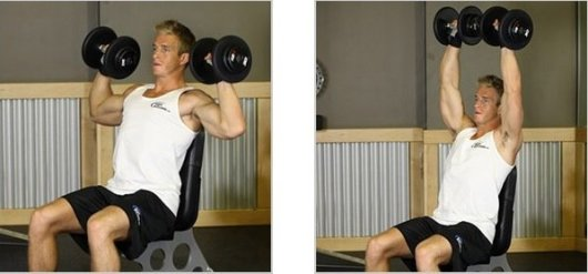 shoulder workouts at home