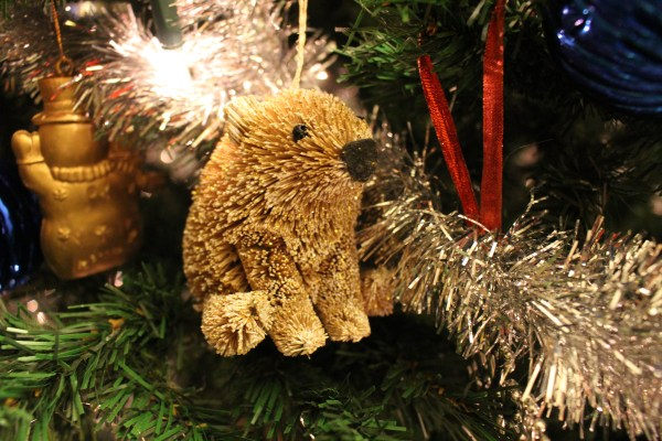 grondhog ornament