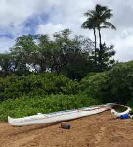 Maui's Outrigger Canoe and Whale Watch Experience!