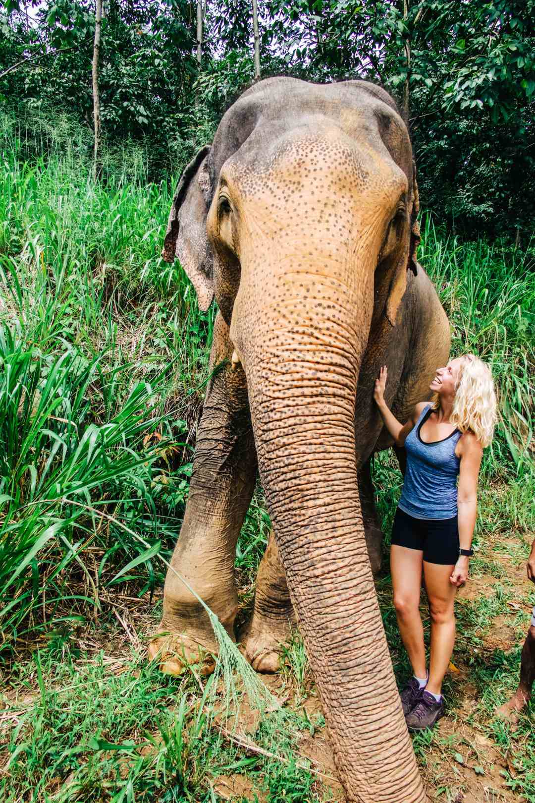 Ever wanted to get up close and personal with elephants? The Elephant Freedom Project is an absolute MUST for anyone visiting Sri Lanka! It was truly an unforgettable experience and one of the best days I have ever had while traveling or volunteering around the world. Read more at www.thefivefoottraveler.com