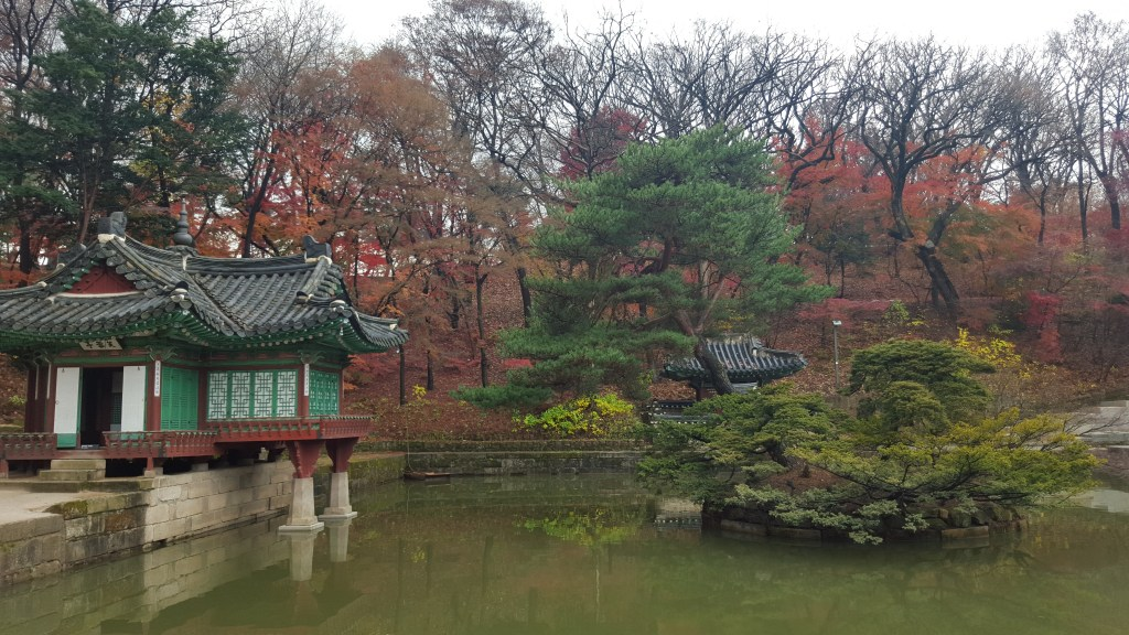 Changdeokgung-palace-secret-garden-lotus-pond