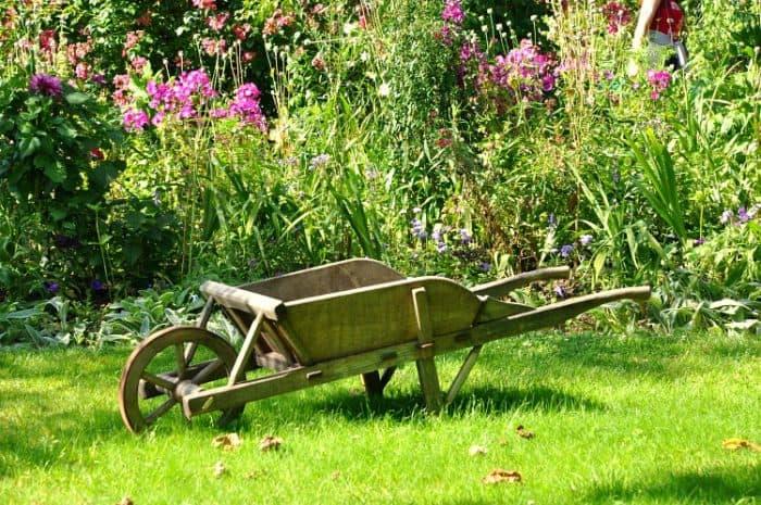 Budget-friendly Ideas for a New Backyard
