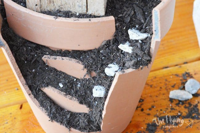 DIY Easy Fairy Garden. The Flying Couponer.
