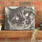 Decorating Ideas: Canvas Prints