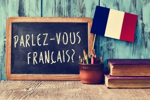 Beginners French Lessons