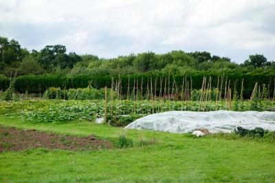 Fold Farm for website-23