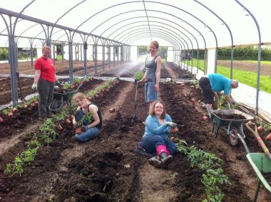 Fold Farm for website-41