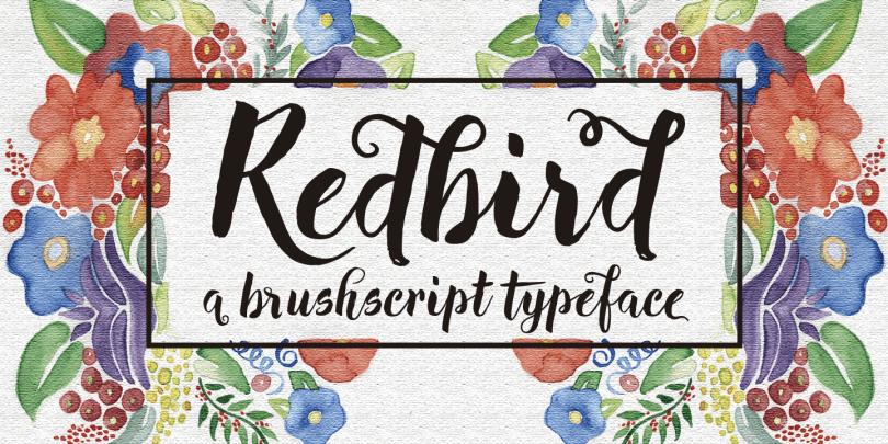 Redbird [1 Font] | The Fonts Master
