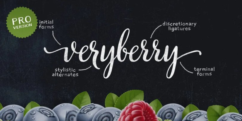 Veryberry Pro [1 Font] | The Fonts Master