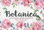 Botanica Script [5 Fonts] | The Fonts Master