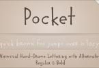 Pocket Px [2 Fonts] | The Fonts Master