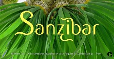 Sanzibar Pro [3 Fonts] | The Fonts Master
