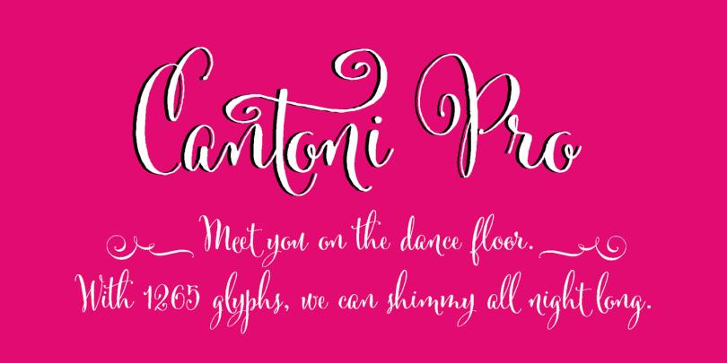 Cantoni [7 Fonts] | The Fonts Master