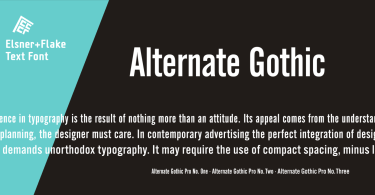 Alternate Gothic Pro Ef [3 Fonts] | The Fonts Master