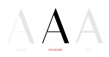 Bodoni Sans [8 Fonts] | The Fonts Master