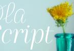 Ola Script 4F [2 Fonts] | The Fonts Master
