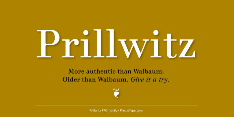 Prillwitz Pro Super Family [12 Fonts] | The Fonts Master