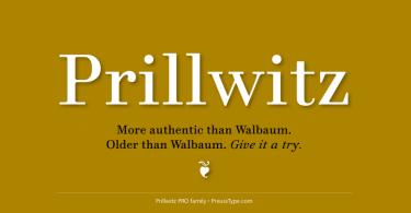 Prillwitz Pro [12 Fonts] | The Fonts Master