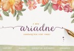 Ariadne Family [3 Fonts] | The Fonts Master