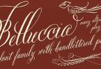 Belluccia [8 Fonts] | The Fonts Master