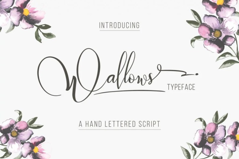 Wallows Typeface [2 Fonts]   The Fonts Master
