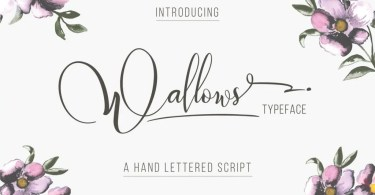 Wallows Typeface [2 Fonts] | The Fonts Master