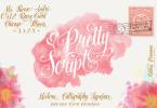 Pretty Script [1 Font] | The Fonts Master