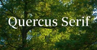 Quercus Serif Super Famıly [16 Fonts]   The Fonts Master