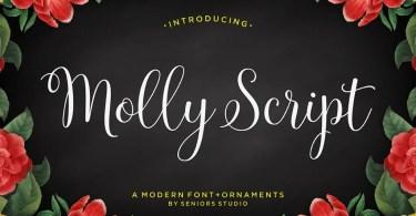 Molly Script [2 Fonts] | The Fonts Master