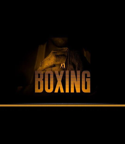 Boxing [1 Font]   The Fonts Master