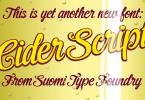 Cider Script [1 Font] | The Fonts Master