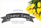 Eleanor Sans [1 Font] | The Fonts Master