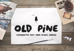 Old Pine [2 Fonts]   The Fonts Master