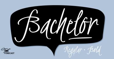 Bachelor Script [2 Fonts] | The Fonts Master