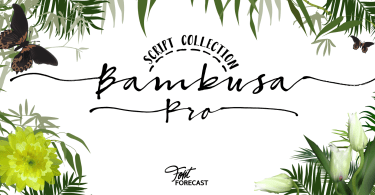 Bambusa Pro [4 Fonts] | The Fonts Master