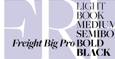Freight Big Pro [12 Fonts]