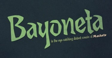Bayoneta Pro [1 Font] | The Fonts Master