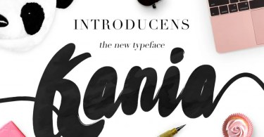 Kania Script [1 Font] | The Fonts Master