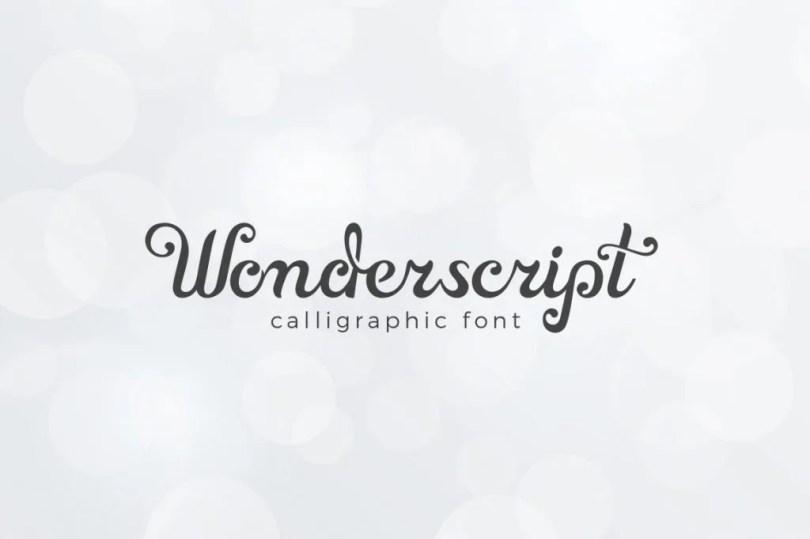 Wonderscript [1 Font] | The Fonts Master