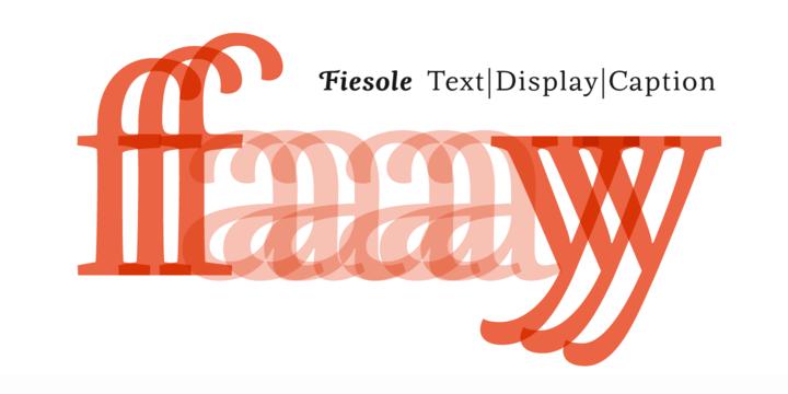 Fiesole [17 Fonts]