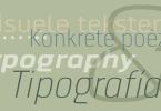 Dignus Super Family [18 Fonts] | The Fonts Master