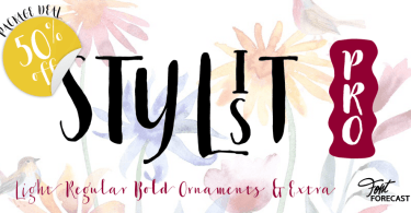 Stylist Pro [5 Fonts] | The Fonts Master