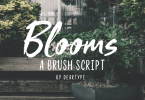 Blooms [4 Fonts] | The Fonts Master