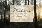 Notera [1 Font] | The Fonts Master