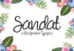 Sandat Script [1 Font] | The Fonts Master