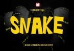 Snake [1 Font] | The Fonts Master