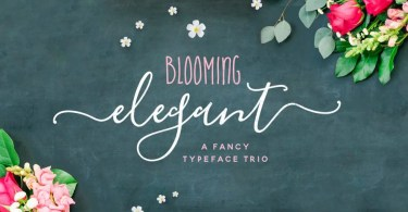 Blooming Elegant [8 Fonts] | The Fonts Master