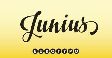 Junius [1 Font] | The Fonts Master