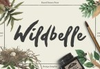 Wildbelle [1 Font] | The Fonts Master